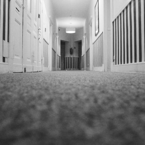 Carpet Cleaning Brisbane - close up of carpet in grayscale